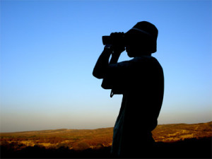 Man searching with binoculars to represent inbound marketing