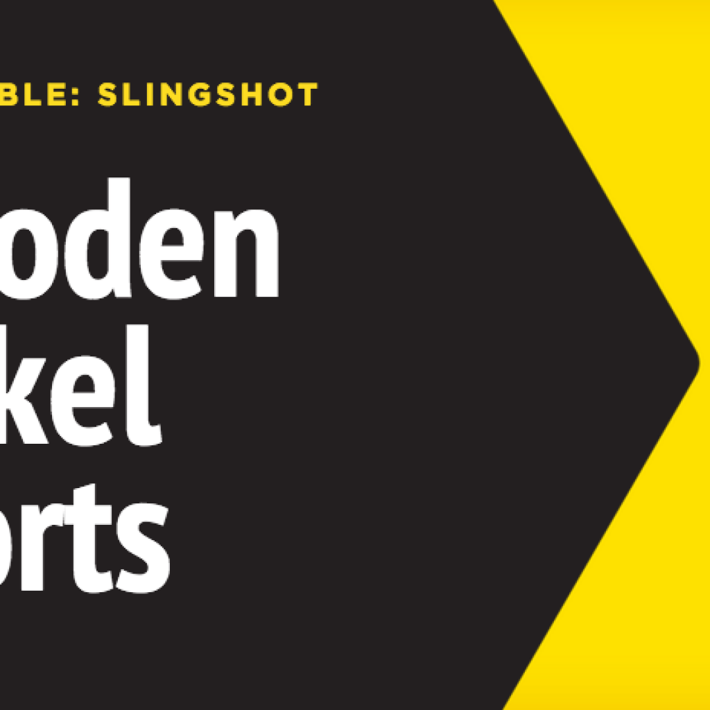 The Story of Wooden Nickel Shorts, a Parody Group with Takedowns of Google, Twilight & More