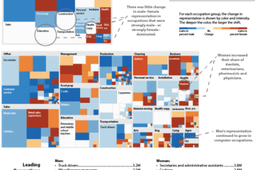 Data Visualizations for Better Decisions