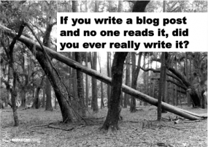 If You Blog And No One Reads It Does It Really Matter?