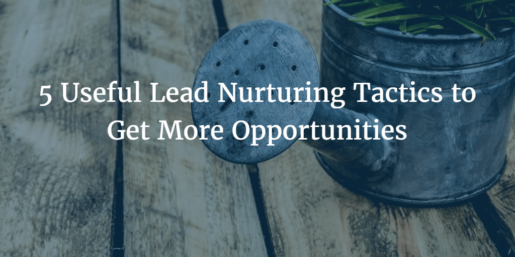 Lead Nurturing: 5 Useful Tactics to Get More Opportunities