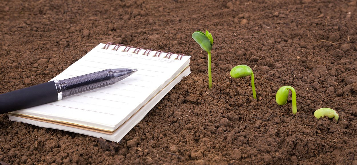Spring Has Sprung: 5 Content Creation Strategies to Grow Your Small Business [This Season]