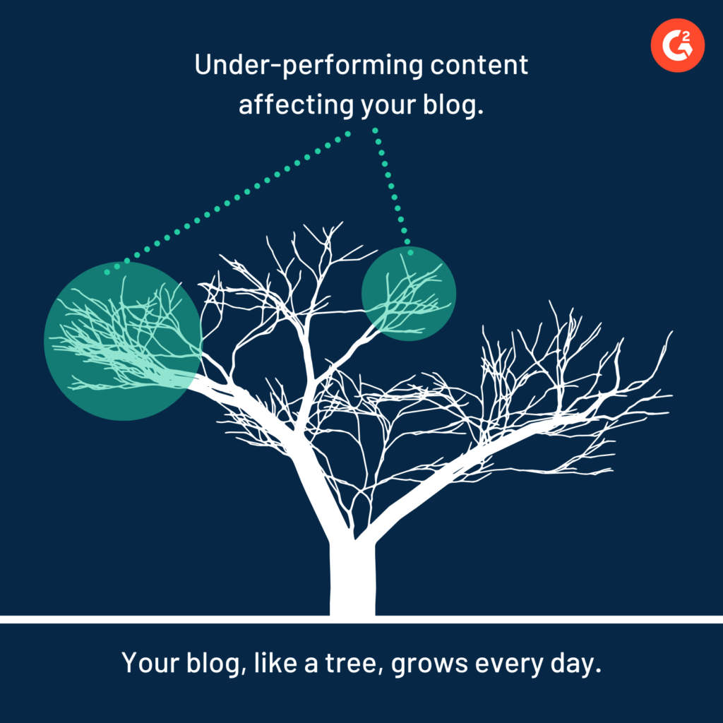 A tree that represents the purpose of content pruning